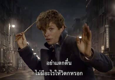"""ตัวอย่างล่าสุด ของ """"สัตว์มหัศจรรย์และถิ่นที่อยู่"""" บรรยายไทย (ตัวที่5) !"""