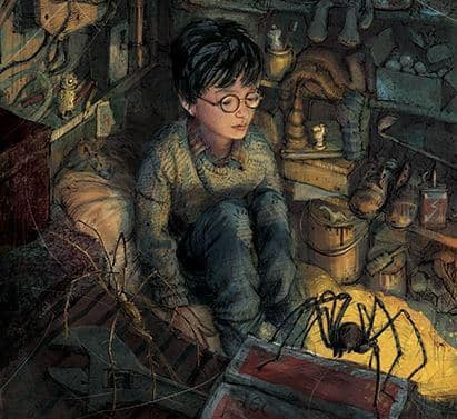 harry-potter-1-illustrated-edition_2