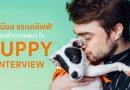 'แดเนียล แรดคลิฟฟ์' ตอบคำถามแฟนๆใน Puppy Interview !!