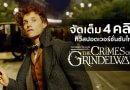 """Fantastic Beasts: The Crimes of Grindelwald"" จัดเต็มอีก 4 คลิปทีวีสปอต ซับไทย !"