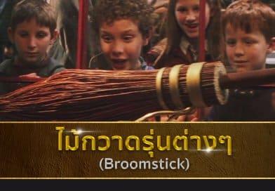 """ไม้กวาดแต่ละรุ่น ในโลกเวทมนตร์ """"แฮร์รี่ พอตเตอร์"""" !"""